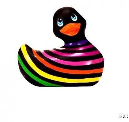 449178-canard-vibrant-sonia-rykiel-nbsp-le-0x414-3 (1)